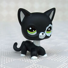 LPS #2249 Littlest Pet Shop Collection Short Hair Cat Black Kitty Standing Toys