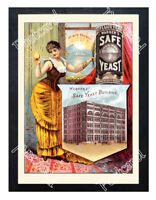 Historic Warner's Safe Yeast  Advertising Postcard 3