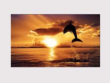 Nuevo 20 X Grande de Lona Pared Arte Atardecer Océano Delfín Salón imprimir imagen