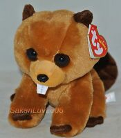 """New! 2017 Release Ty Beanie Baby RICHIE the Beaver  6"""" size nwt's"""