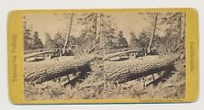 1870s Stereoview Yellow Mount Yosemite Valley California Cathedral Rocks  Bridge