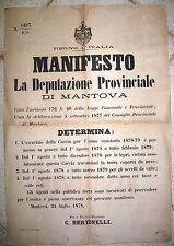 Y979-MANTOVA-MANIFESTO SUR LA CHASSE 1878