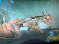 ark survival evolved XBOX PVE Level 360 Zombie Fire Wyvern CLONE - Rideable