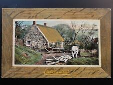 Wood / Tree Cutting - Shire Horse Drags Trees FROM THE WOODS - Old Postcard