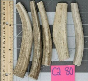 5 Small Softer More Marrow Mule Deer Antler Dog Chew Treat & Toy Lot