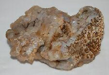 Rare Old Stock Natural Rough Specimen Blue Botryoidal Agate Chalcedony 1+ lbs.