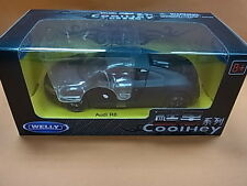 Welly 1/24 CoolHey Audi R8
