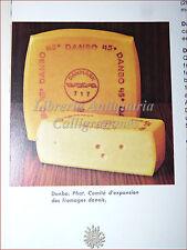 CUCINA GASTRONOMIA: Courtine, Larousse des Fromages FORMAGGI 1973 Illustrato