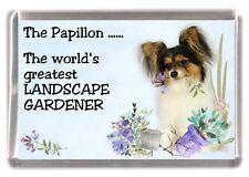 """Papillon (Butterfly) Dog Fridge Magnet """"Greatest Landscape Gardener"""" - Starprint"""