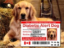 Canadian Service Dog ID Card, Diabetic Alert Service Dog Wallet Card, SD Card