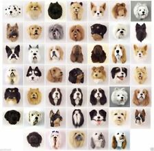 (5) DIFFERENT COLLECTABLE DOG FUR MAGNETS. OUR CHOICE. VERY LIFE LIKE!