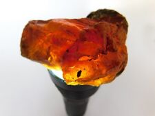 36.7g Borneo Amber Rough For Jewelry Making Or Display Specimen
