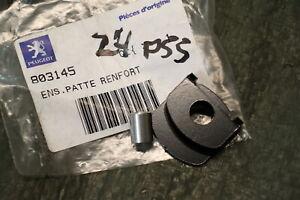 P55) Peugeot Citystar 125 LC Couper Plaque 803145 Filtre à Air Injection Système