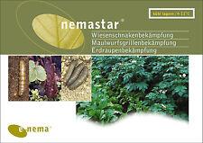 50 Mio. Nematoden gegen Wiesenschnaken (für 100m² Fläche)