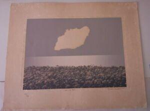 Original Cuban serigraph  done  by cuban master Tomas Sanchez 1985.