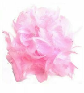 30 pink Fluffy Feathers 8-12 cm Card Memory wedding Crafts Embellishments