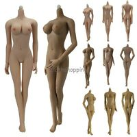 1/6 Scale JIAOUDOL Flexible Steel Stainless Body Figure W 6 Color Large Bust
