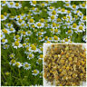 Chamomile Flowers 1oz, soap making supplies, herbal extracts, teas, salves.
