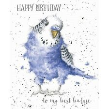 Wrendale Designs Happy Birthday Greeting Card to My Best Budgie