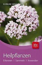 Heilpflanzen: Erkennen · Sammeln · Anwenden von Wen...   Buch   Zustand sehr gut