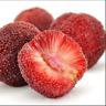 10 Pcs Seeds Arbutus Unedo Strawberry Tree Delicious Fruit Garden Bonsai NEW G R
