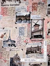 Paris Fabric - Eiffel Tower Notre Dame Scenes Timeless Treasures C2810 - Yard