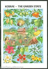 MICRONESIA  KOSRAE THE GARDEN STATE  SHEET  IMPERFORATED PROOF ON CARD   RARE