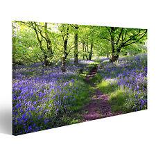 Blumen im Wald Lavendel Bild auf Leinwand BIF-1P