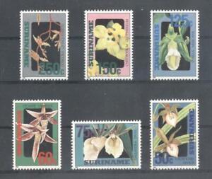 (861706) Flowers, Suriname