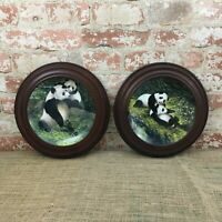 Will Nelson Collectors Panda Plates Playtime Pandas and A Touch of Love