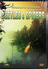 Wildlife Stories The Whole Story: Beetles & Spiders NEW DVD Educational Species