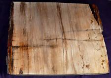 piastra legno pietrificato MADAGASCAR 6058G 360x280x27mm CAMINETTO DECORAZIONE