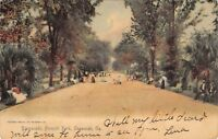 SAVANNAH GEORGIA~PROMEANDE IN FORSYTH PARK~ROTOGRAPH PHOTO POSTCARD 1900s