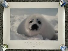 """BOB TALBOT """"Protect Wildlife"""" Signed Special Edition Poster /1500 1994 24x31 COA"""