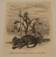 1886 magazine engraving ~ HUNTING A TIGER ON HORSEBACK