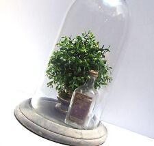 "7"" Boxwood Topiary Ball Medium Hanging Orb  French Country Paris Flea SULLIVANS"