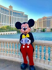Mickey Mouse and Minnie mouse Mascot Costumes cosplay real photo party