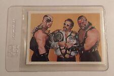 Road Warriors,Rare,Wrestling Card,LOD,Legion of Doom,NWA,Wonderoma,80s,*Rookie*