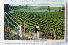 1940 POSTCARD TWO WOMEN AT GRAPE VINEYARD ON TABOR FARM SODUS MICHIGAN #5vvf