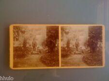 STC327 stéréo Photo ancienne Chien Chasse Cerf Biche Chevreuil Chasseur 1908
