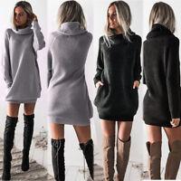 Women Knitted Turtleneck Long Sleeve Sweater Dress Winter Casual Mini Dress