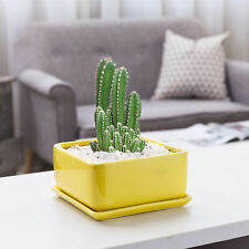 MyGift 7 Inch Square Yellow Ceramic Planter Pot with Removable Drainage Tray