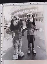 Photo PLUTO DINGO à Rome/DYSNEY/tirage originale/presse/argentique/AGIP R.Cohen