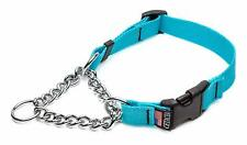Cetacea Chain Martingale Dog/Pet Collar with Quick Release, X-Small, Turquoise