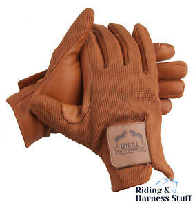 Ideal Equestrian Profi Carriage Driving Gloves