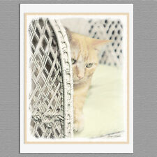 6 Yellow Tabby Cat Blank Art Note Greeting Cards