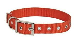 "Petmate Aspen Pet Products NYL 2Ply Collar, Orange, 1"" x 20-28"""