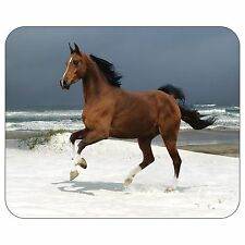 Norwegian Beach Warmblood Horse Mousepad Mouse Pad Mat