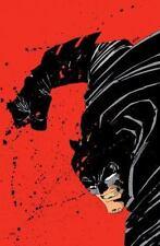 Absolute Dark Knight-ExLibrary
