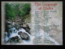 POSTCARD B45-12 THE LANGUAGE OF WALES (2)